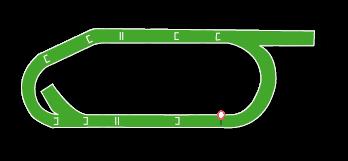Ayr Jumps Track