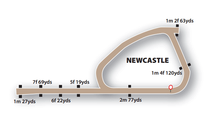 Newcastle All Weather Track