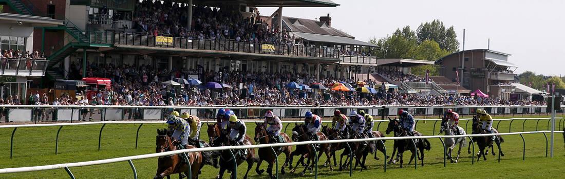 Warwick Racecourse Guide