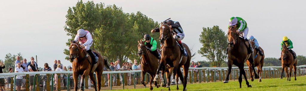 Yarco Races
