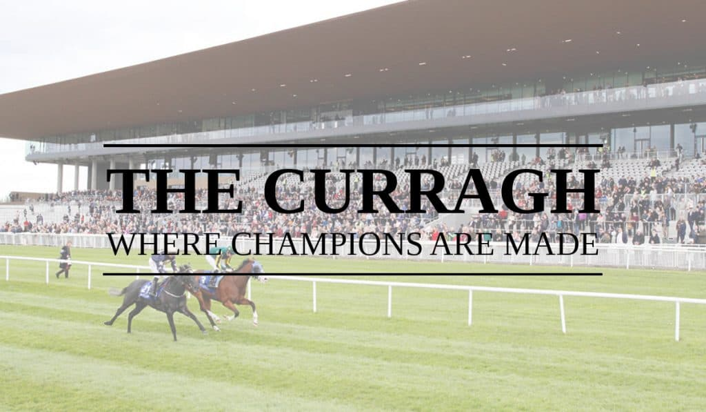 Curragh Racecourse Guide