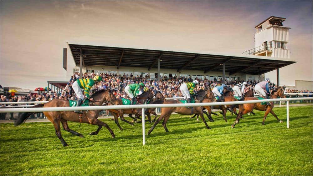 Downpatrick Racecourse Guide