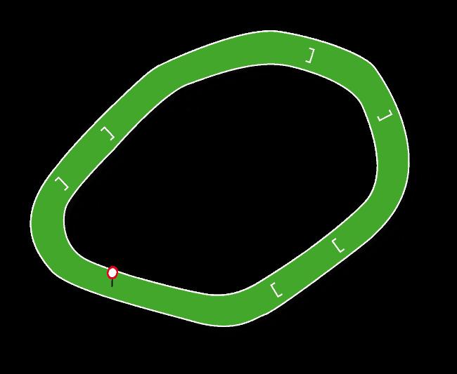 Downpatrick Racecourse Map