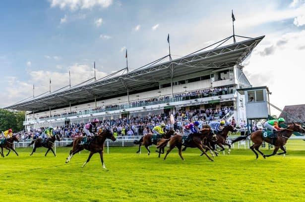 Hamilton Racecourse Guide