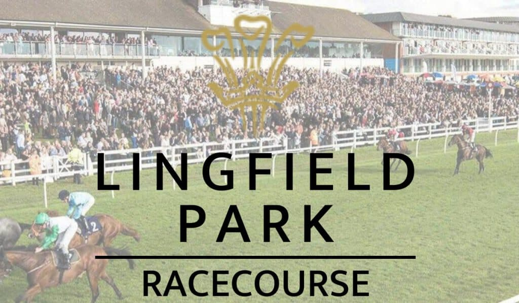 Lingfield Park Racecourse Guide
