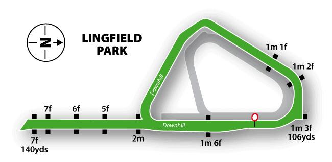 Lingfield Turf Flat Track