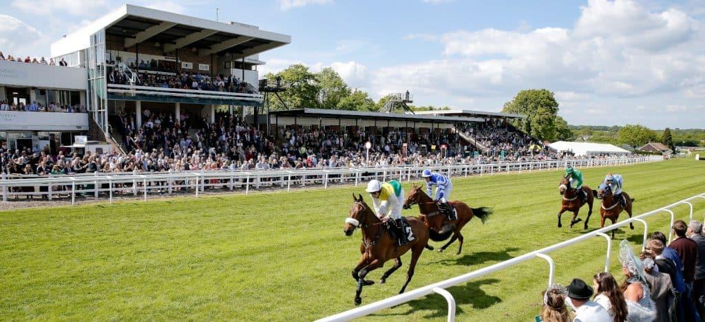 Plumpton Racecourse Guide