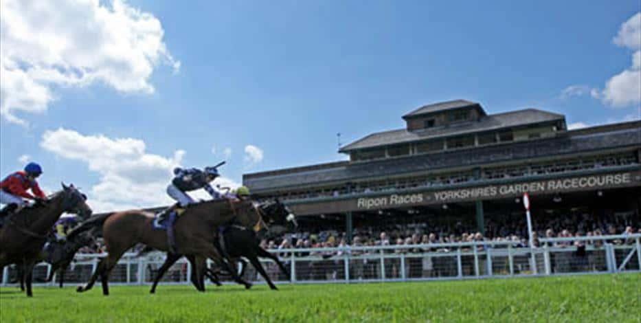 Ripon Racecourse Guide
