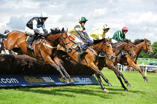 Worcester Racecourse Guide