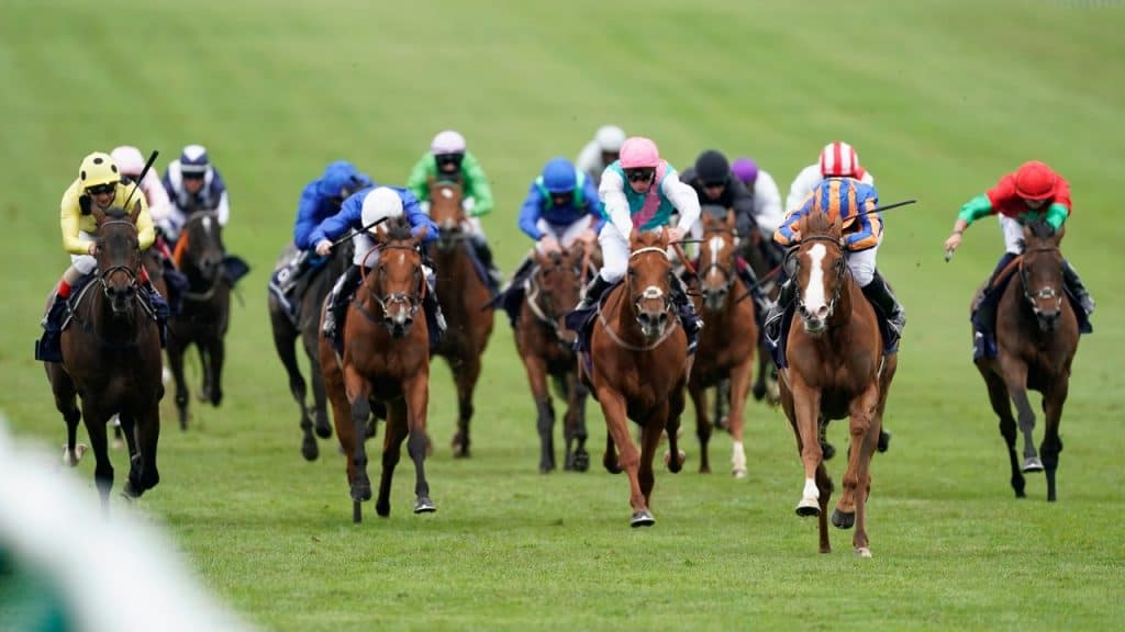 1000 guineas 2021 betting sites sports betting 101 moneyline channel