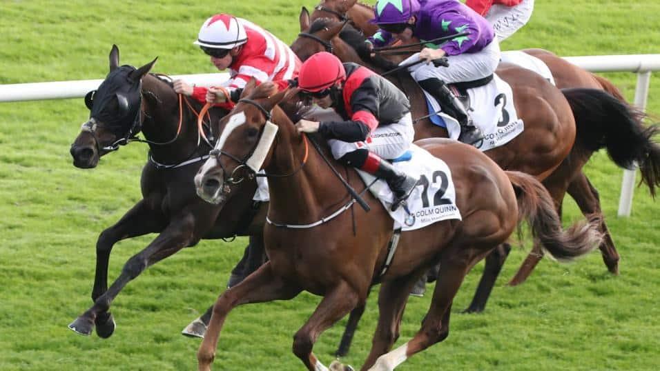 Best Horse Racing Betting