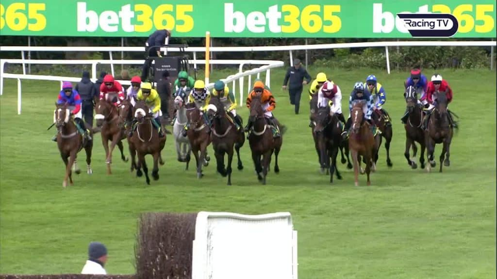 Bet365 Gold Cup