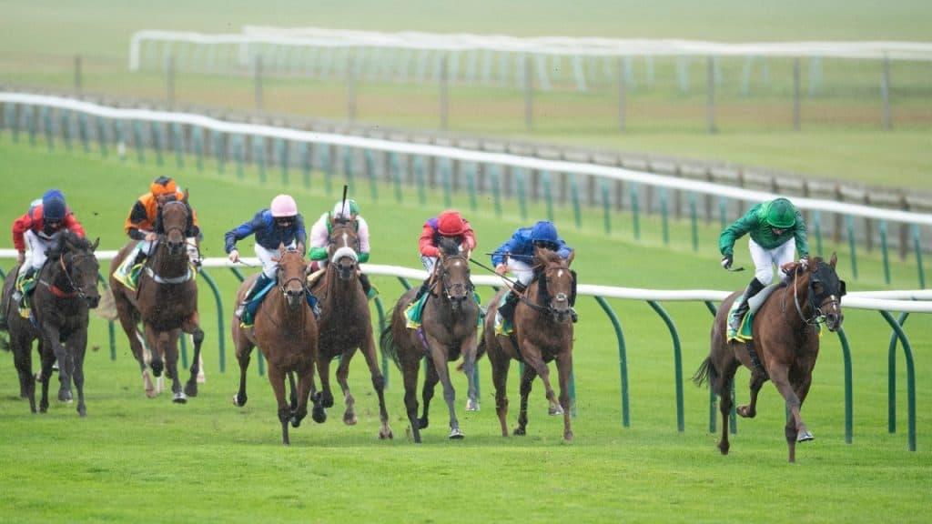 Cambridgeshire Race