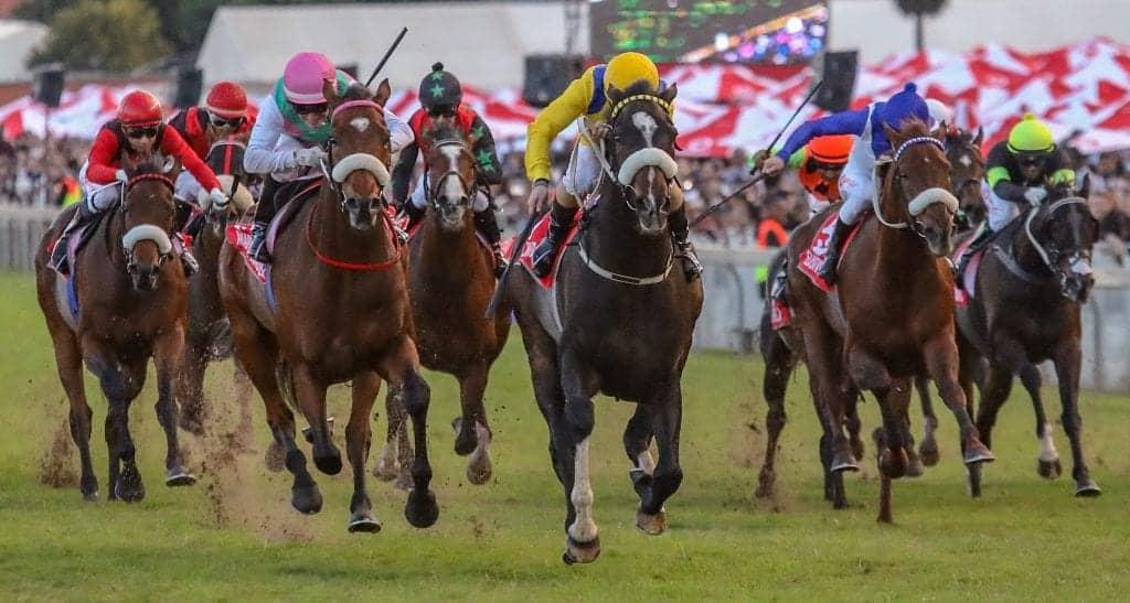 Durban July Race