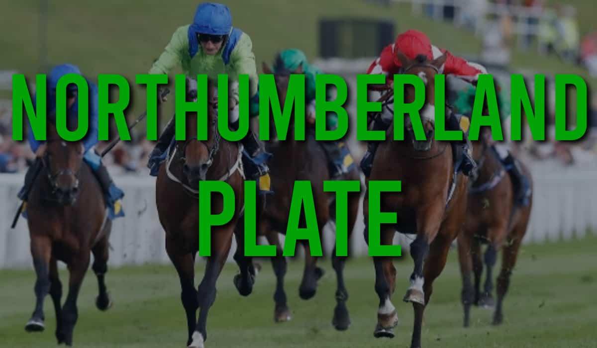 Northumberland plate betting calculator mouscron vs charleroi betting expert foot
