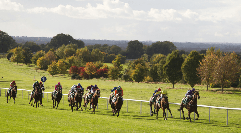 Navan Racecourse Guide
