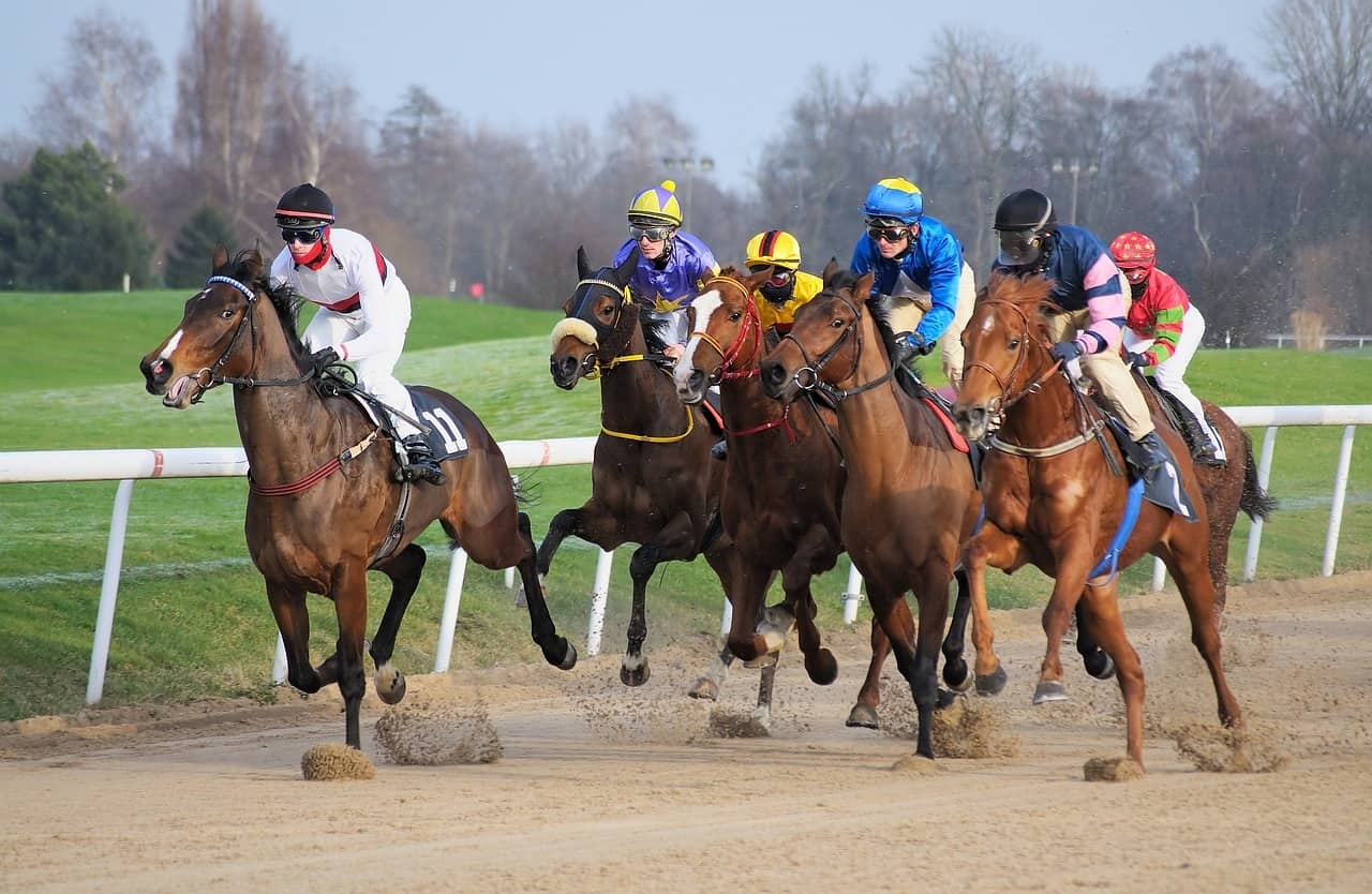 Is Horse Racing Fixed