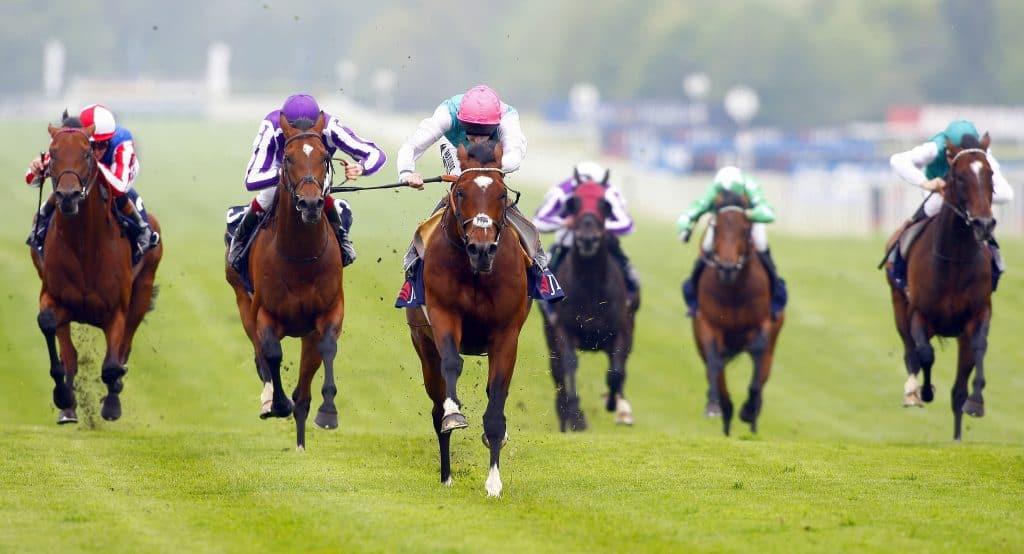 Biggest Horse Races