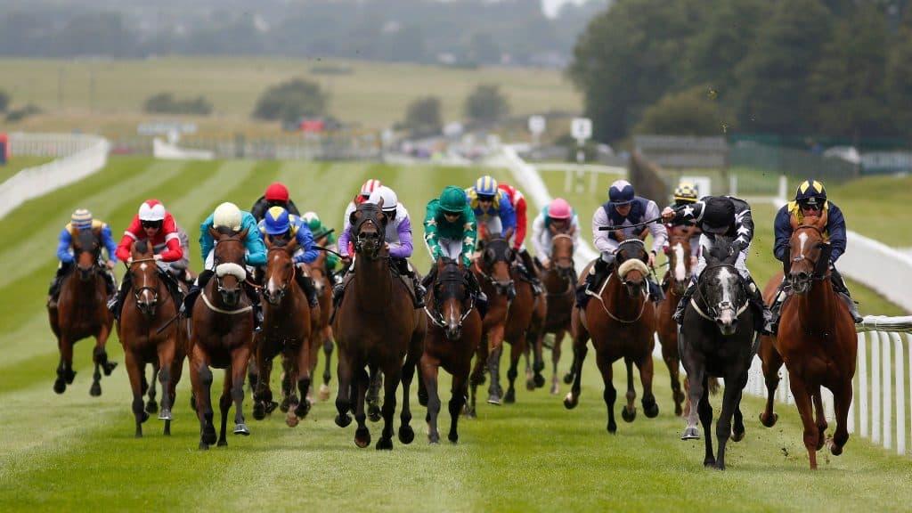 Irish Racecourses