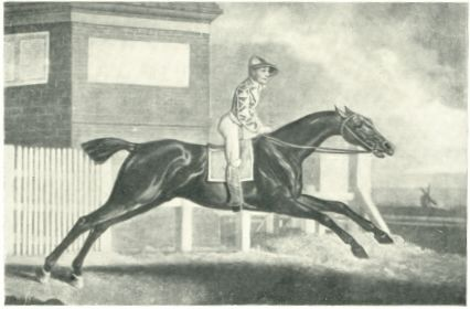 Irish Racing History